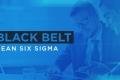 Black Belt - Lean Seis Sigma