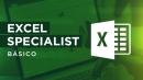 Excel Specialist - Módulo I